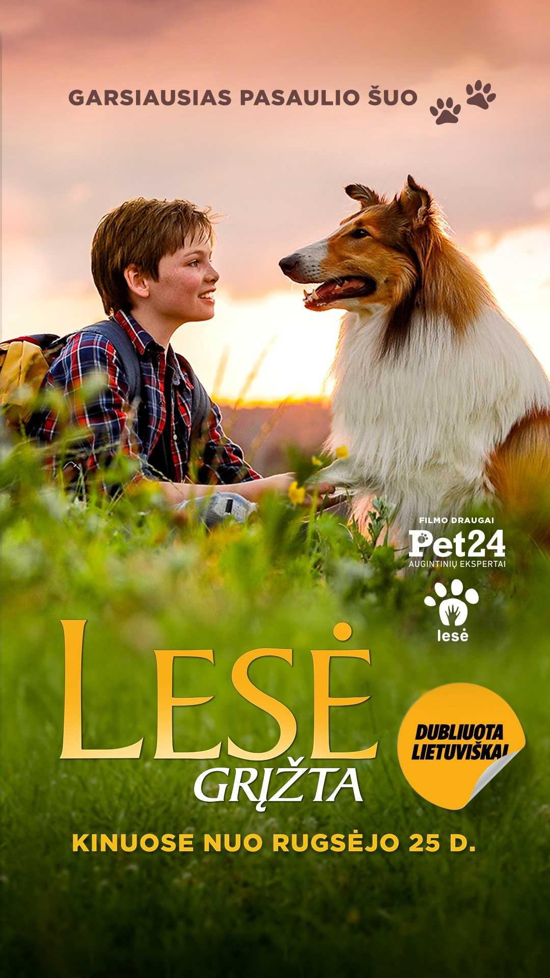 LESĖ GRĮŽTA (Lassie)