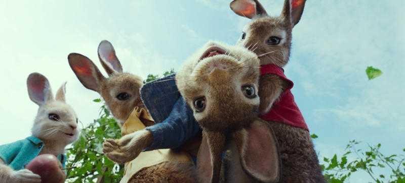 Multikinukas: Triušis piteris (Peter Rabbit)