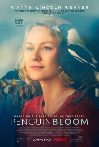 Blumų šeimos istorija (Penguin Bloom)