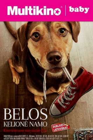 MultiBabyKino: Belos kelionė namo (Dog's Way Home)