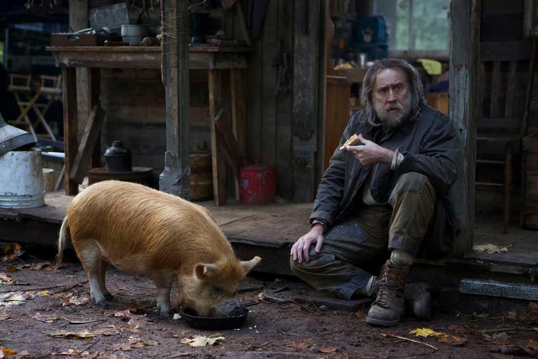Kiaulė (Pig)