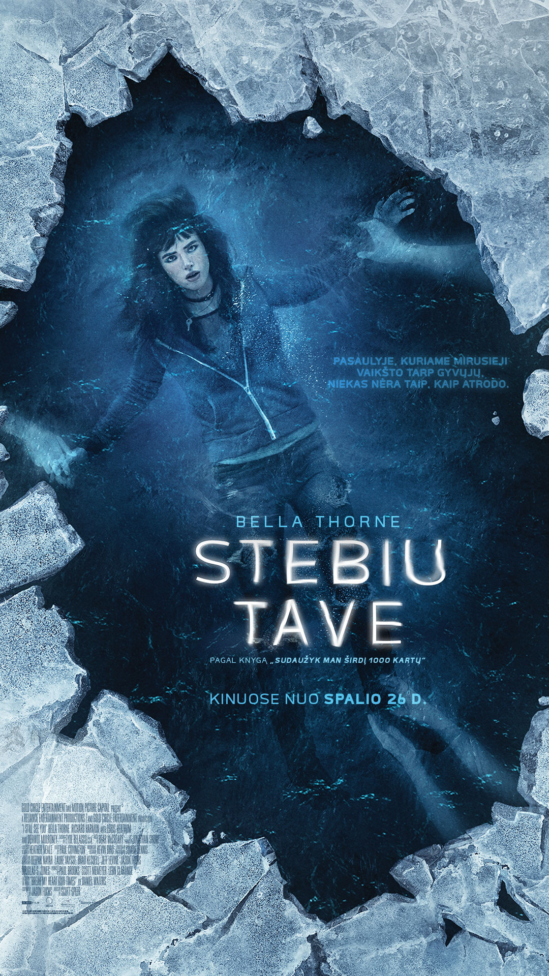 STEBIU TAVE (I still see you)
